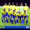 World Cup 2010 32 Teams - Brazil